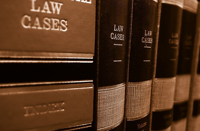 law firm in Lithuania, books